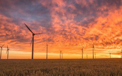 El Gobierno reclamará 100 millones a las renovables por las últimas subastas
